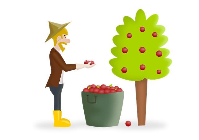 Low hanging fruit - Bedeutung & wie du es nutzt